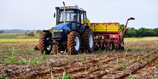 Área de cultivo da soja perde 32,2 mil hectares para o milho - Piauí - Portal O Dia