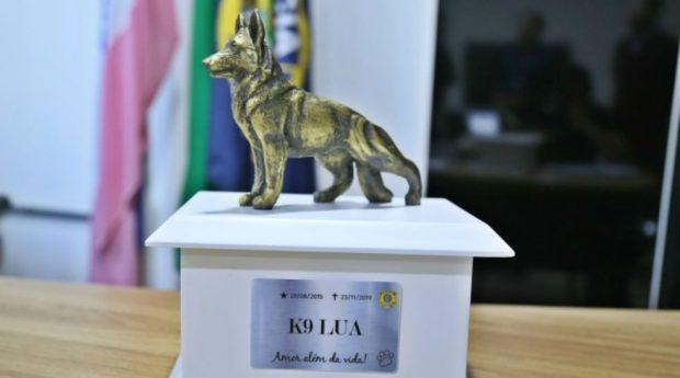 Cinzas da cadela Lua vão para galeria de heróis da PRF-ES
