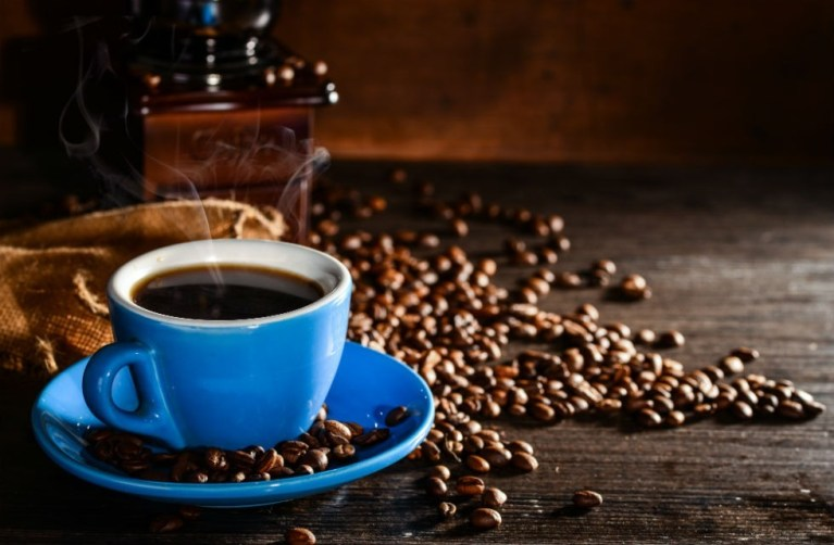Inscrições abertas para premiação dos melhores cafés do Espírito Santo