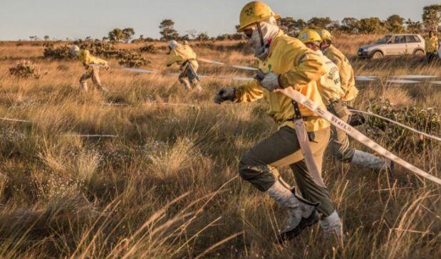 ICMBio seleciona brigadistas para atuarem no Parque do Caparaó