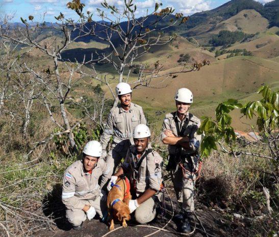 Cadela é resgatada de paredão de pedra em distrito de Apiacá