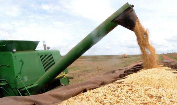 Produção de grãos da safra 2020/21 deve alcançar novo recorde