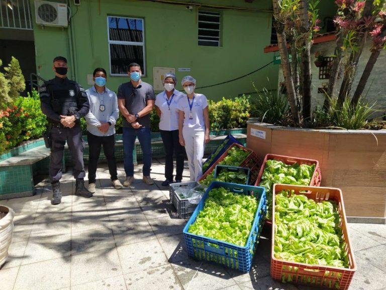 Presídio de Cachoeiro doa hortaliças para a Santa Casa
