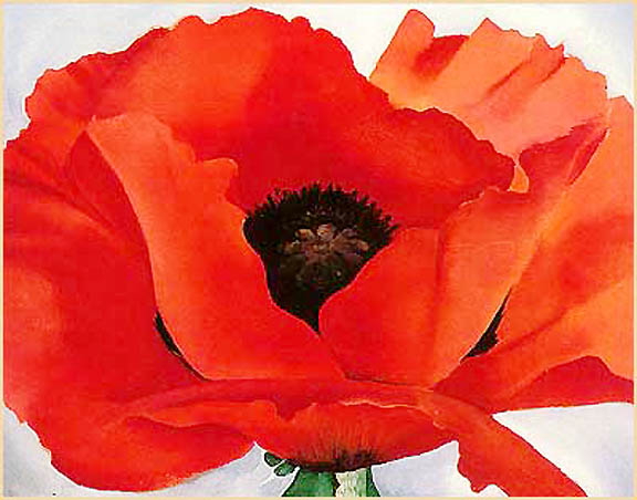 Georgia O'Keefe, Red Poppy - Florida Institute of Technology show 2006 -