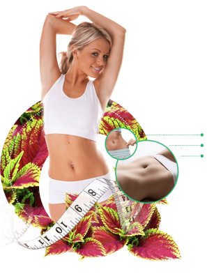 Forskolin Body Blast Review