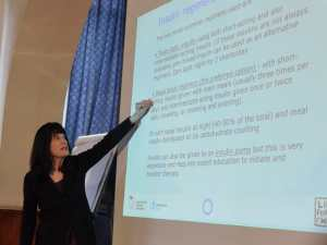 Prof Fran Kaufman presenting in Ethiopia