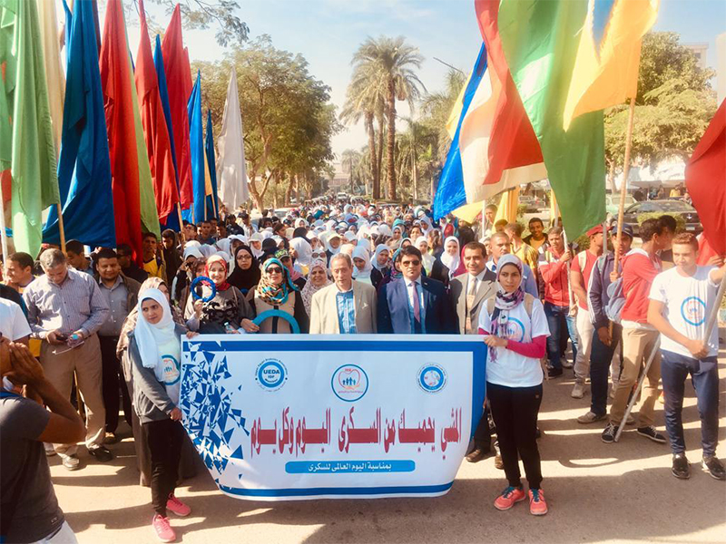 Diabetes walkathon Egypt