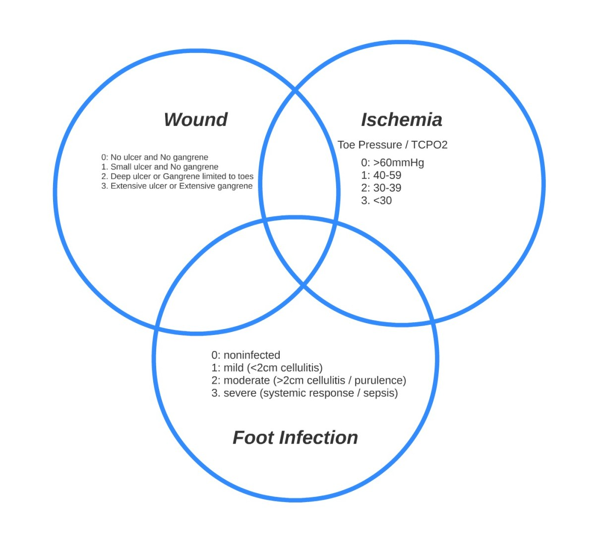 Visualizing and Using WIFI Everyday (Wound, Ischemia, Foot Infection): Three Dynamic Rings of Risk