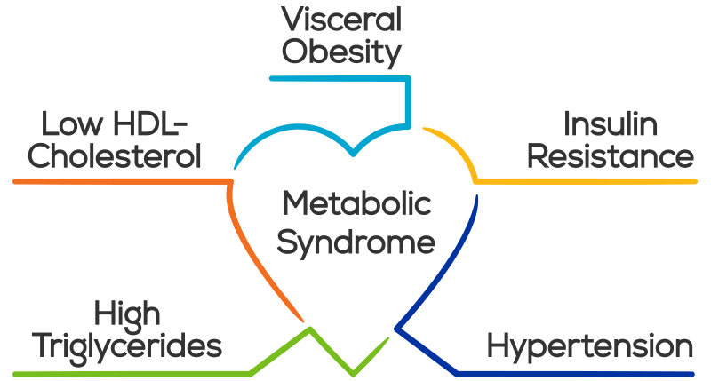 What is Metabolic Syndrome? The Slow, Silent Assassin