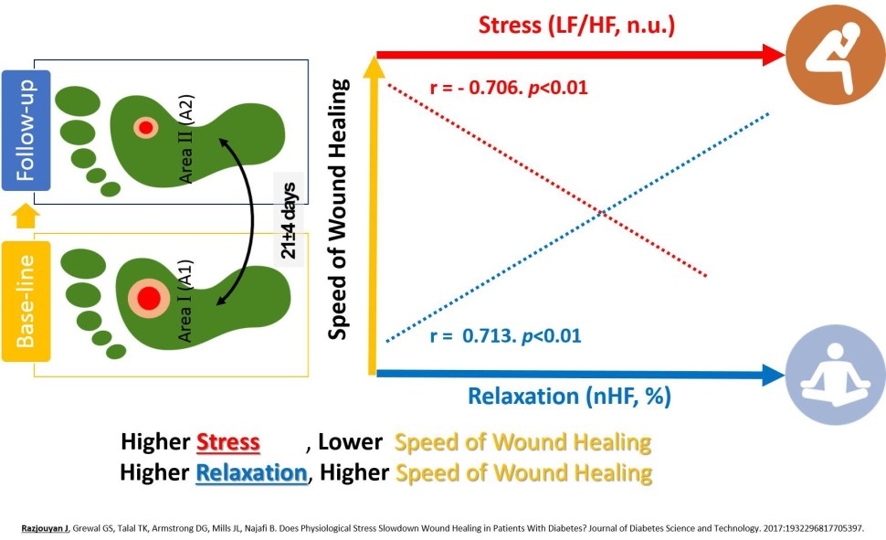 Stress Slows Down Wound Healing In Diabetic Foot Ulcers Study Bcm Uofazresearch Df Blog