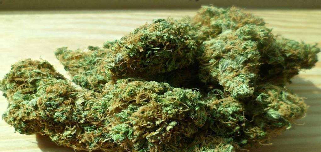 Marijuana-increases-risk-of-pre-diabtes-