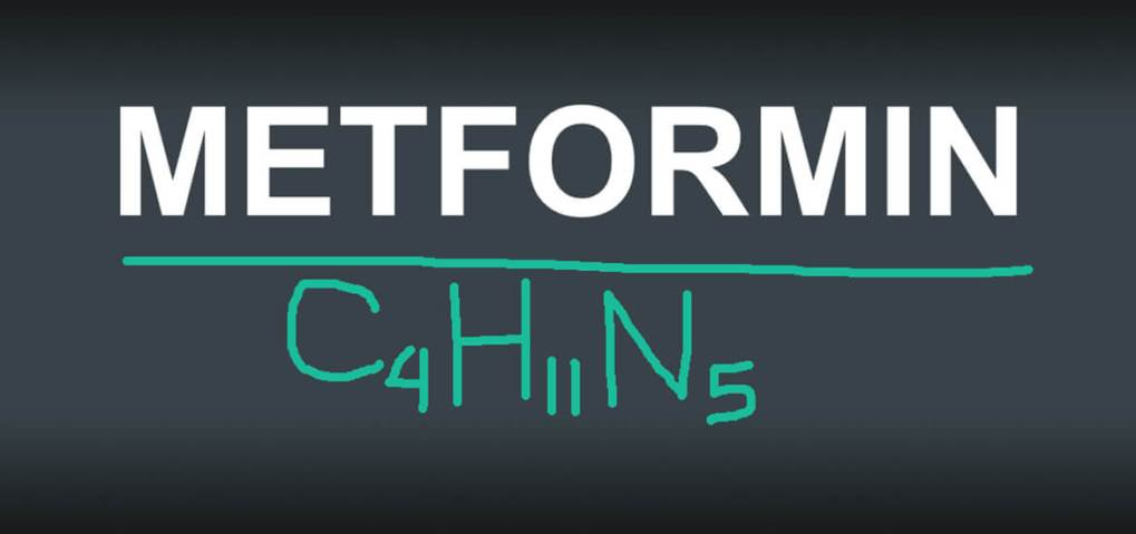 Metformin diabetes