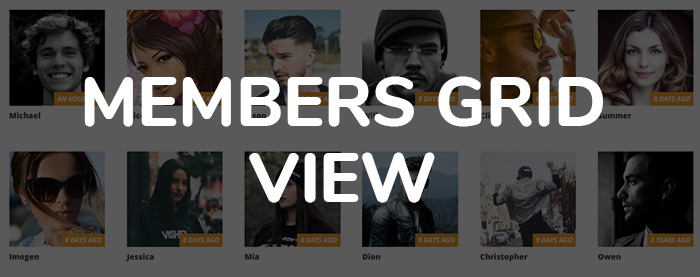 CommunityJunction - BuddyPress Membership Theme - 7