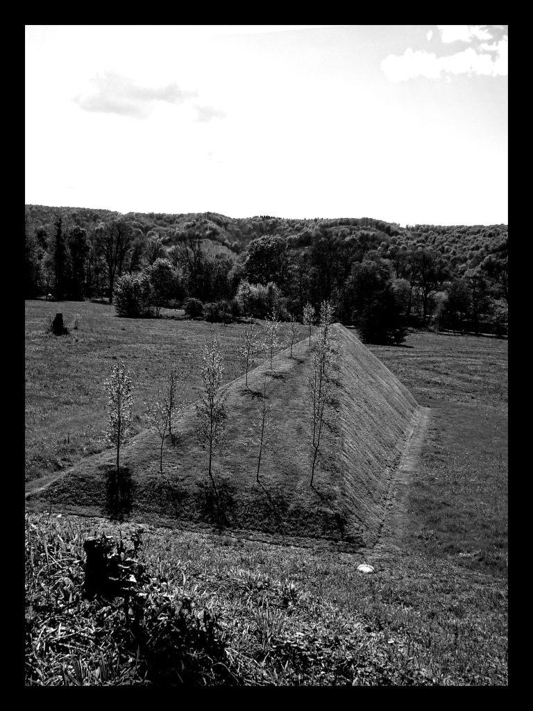 Sanctuaire, Nils-Udo © JP Cazier