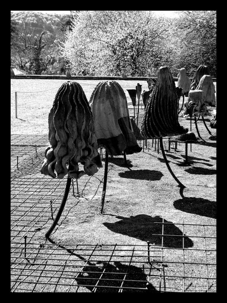 Vestiges, Anne Barrès © JP Cazier