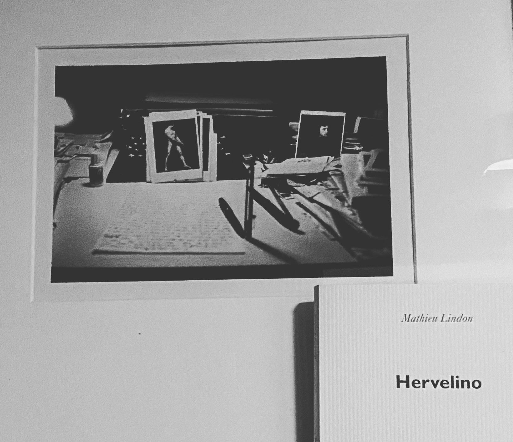 Mathieu Lindon : «ça n'existe pas, un livre sur Hervé» (Hervelino)