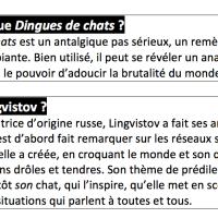 Papiers à Bulles (9) : Dr Lingvistov I presume ?