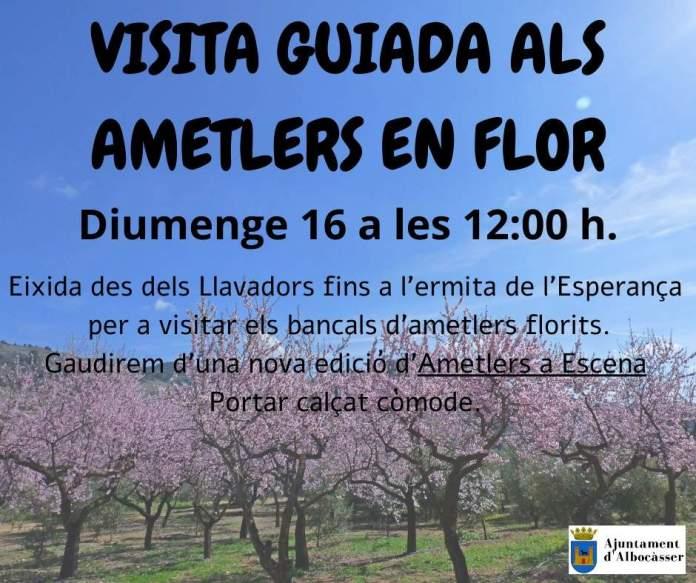 Cartell de la visita guiada als ametlers en flor d'Albocàsser