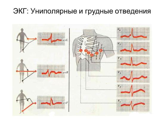 Andrologist prosztatitis)