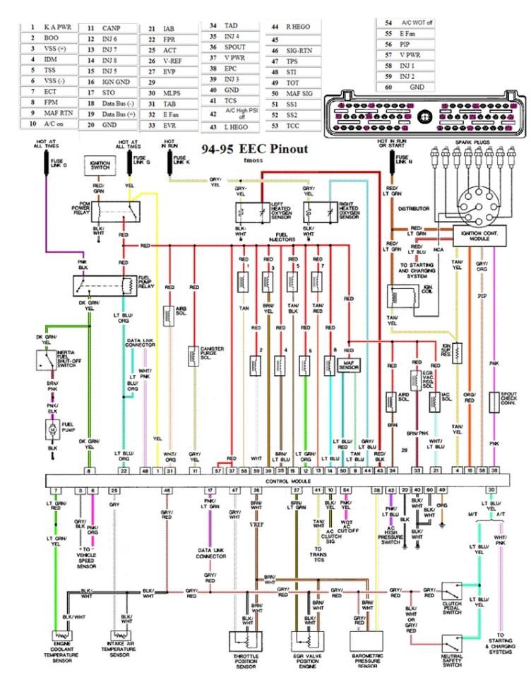 9495 Mustang EEC Wiring Diagram Pinout