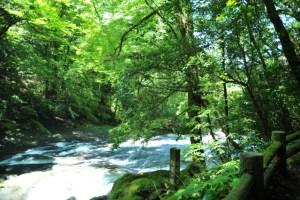 熊本県の方言