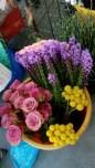 Rams flors-1