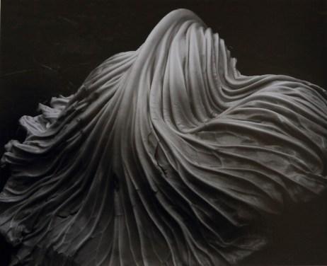dialna - Tina Modotti