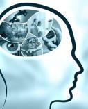 imagen_programa_entrenamiento_dialogo_entre_cerebros_300_371-compressor
