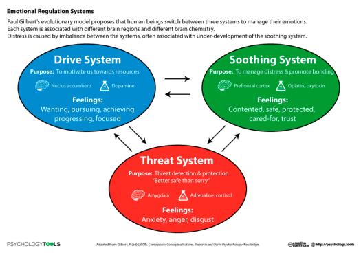 Emotional Regulations Systems