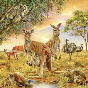 Animals Diamond Painting