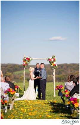 Virgina wedding planner 10