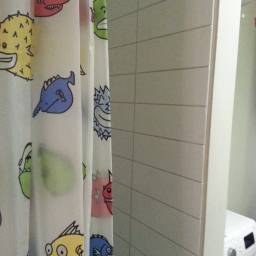 In the bathroom: Stay away from tacky shower curtains!