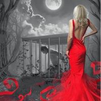 Red Dress Diamond Painting Kit