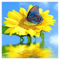 Sunflower Butterfly Diamond Painting Kit