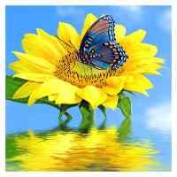 Sunflower Butterfly Diamond Painting Kit