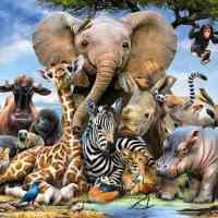 African Animals Diamond Painting Kit