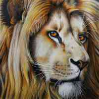 Lion Portrait Diamond Painting Kit