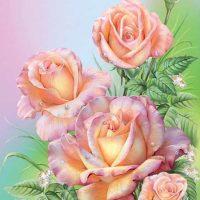 Pastel Rose Diamond Painting Kit