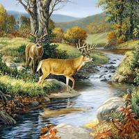 Deer Creek Diamond Painting Kit
