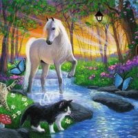 Cat and Horse Diamond Painting Kit