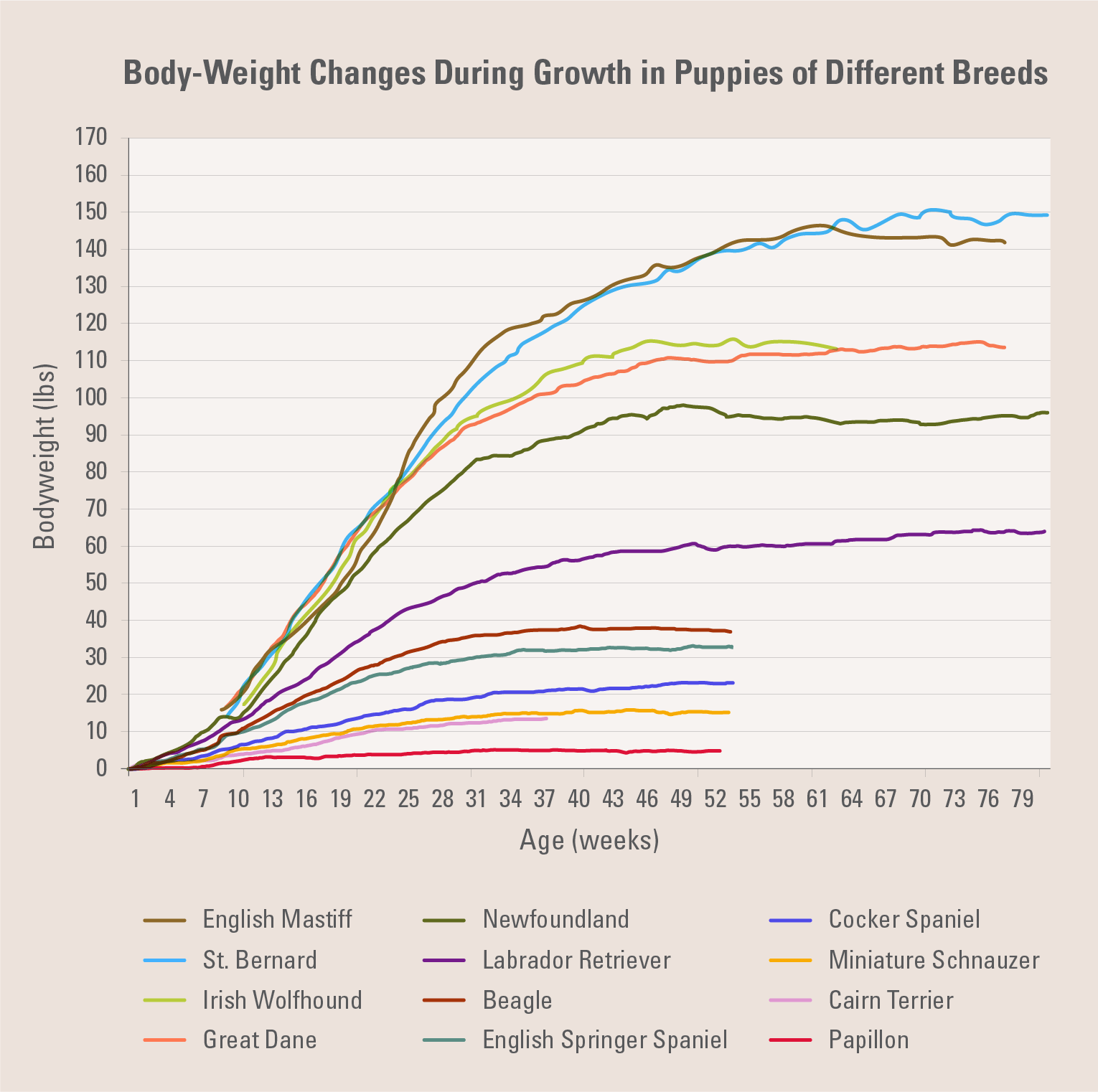 Body-Weight Changes During Growth in Puppies of Different Breeds | Diamond Pet Foods