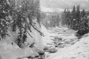 Magical Snowscape