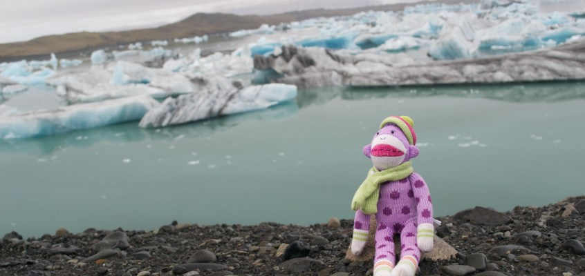 The adventures of Dottie, the sock monkey: Iceland part 1