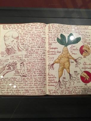 A look inside del Toro's notebook