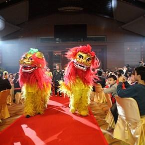 醒獅賀囍 Dancing Lions