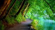 Free-Wallpaper-Nature-Scenes