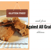 Not A Grain Breakfast Bars