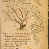 The Filāḥa Texts Project: Medieval Books of Crop and Animal Husbandry