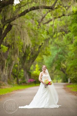 Bridal Portrait Magnolia Plantation Charleston Wedding photographer (70)