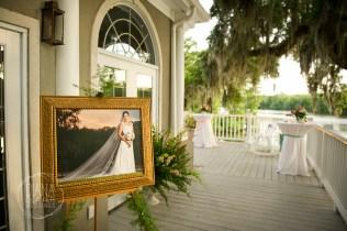 bridal portrait at the reception